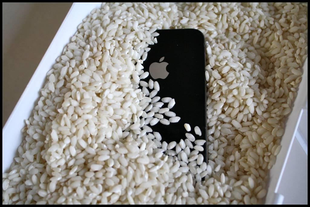 iPhone-в-рисе